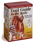 Trail Guide To The Body Anatomy & Palpation Flash Cards V2 Muscles - 5th Edition