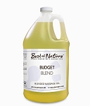 Best of Nature 100% Pure Budget Blend Massage Oil - Half Gallon