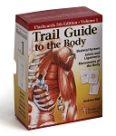 Trail Guide To The Body Anatomy & Palpation Flash Cards V1 Bones - 5th Edition