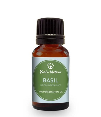 Best Of Nature Sweet Basil Essential Oil - 3.3oz